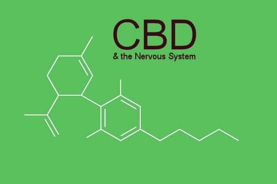 How-CBD-Benefits-the-Human-Nervous-System-1